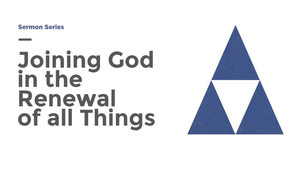 Joining God in the Renewal of All Things series image